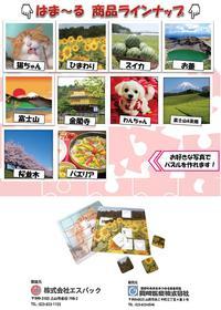 チラシ10画像(定価のみ)_2.JPG